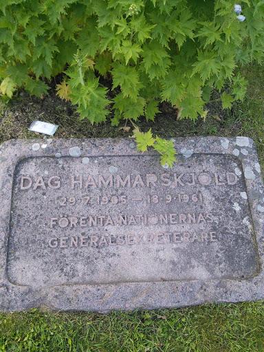 Dag Hammarskjld Ingress Portal
